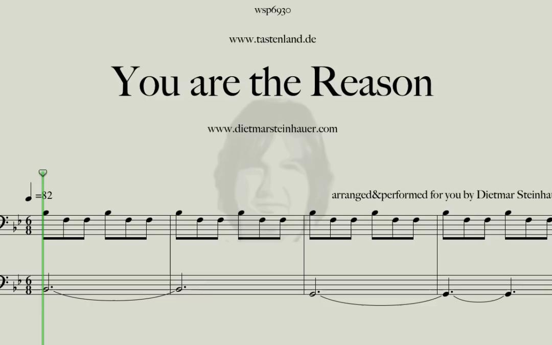 You are the Reason  –  Calum Scott